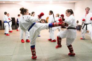 sbory_po-karate