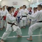 Учебно-тренировочный семинар по кумитэ под руководством Каткова Дениса.