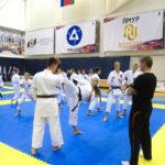 15_vsestilevoe-karate_anapa_2016