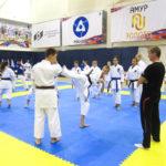 16_vsestilevoe-karate_anapa_2016