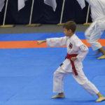 17vsestilevoe-karate_anapa_2016