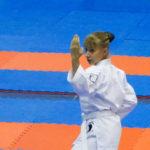 20-vsestilevoe-karate_anapa_2016