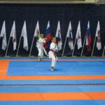 30-vsestilevoe-karate_anapa_2016