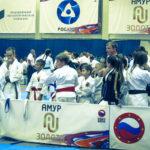 33-vsestilevoe-karate_anapa_2016