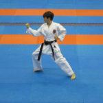 35-vsestilevoe-karate_anapa_2016