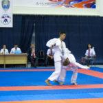 36-vsestilevoe-karate_anapa_2016