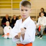 Турнир Будо-Академии по всестилевому каратэ среди детей и подростков с 7 и 8 КЮ-16 октября 2016 год, г.Москва.