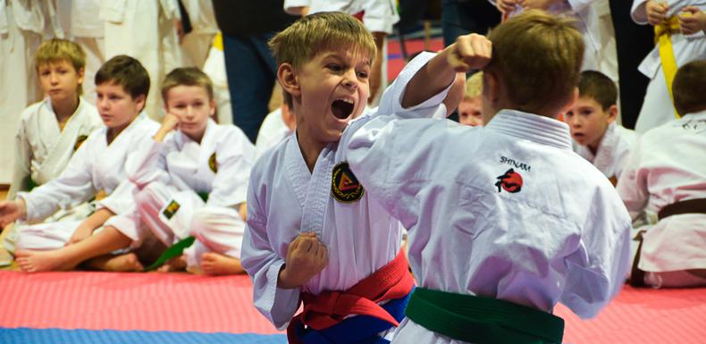 27 ноября 2016 года — соревнования Будо-Академии по каратэ среди детей и подростков с 6 КЮ и выше