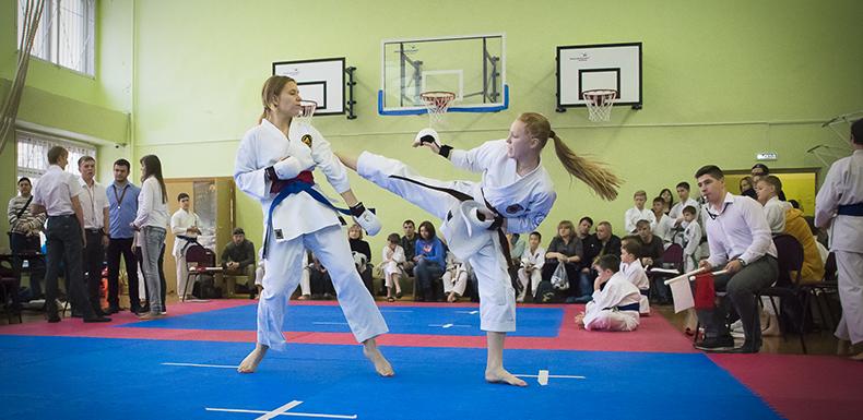 19 марта 2017 года — Турнир КБИ «Будо-Академия» по всестилевому каратэ среди детей и подростков с 6 кю и выше.