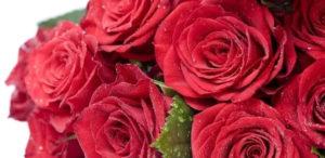 С праздником весны, любви и красоты!