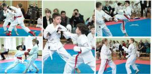 семинар по каратэ, секции каратэ в москве, детское каратэ, кумитэ