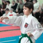 Турнир по всестилевому каратэ «Весенние надежды»-19 марта 2017 год, г. Москва