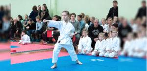 23 апреля 2017 года состоится Турнир КБИ «Будо-Академия» по традиционному каратэ «Белый пояс».