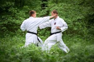 Летние учебно-тренировочные сборы по традиционному каратэ-до