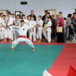 В ФОК «Семья» состоялся Открытый Турнир по всестилевому каратэ, посвящённый Дню учителя.