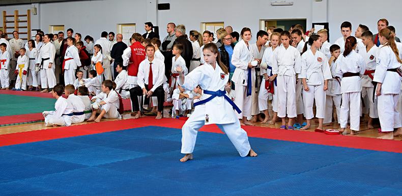 12 ноября 2017 года спортсмены КБИ «Будо-Академия» примут участие в Открытом Турнире по всестилевому каратэ в городе Чехове.