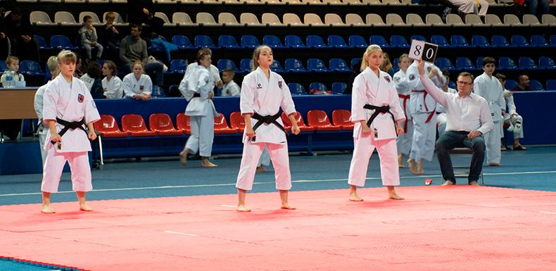 26 ноября 2017 года состоится Турнир КБИ «Будо-Академия» по всестилевому каратэ среди детей и подростков с 6 КЮ и выше.