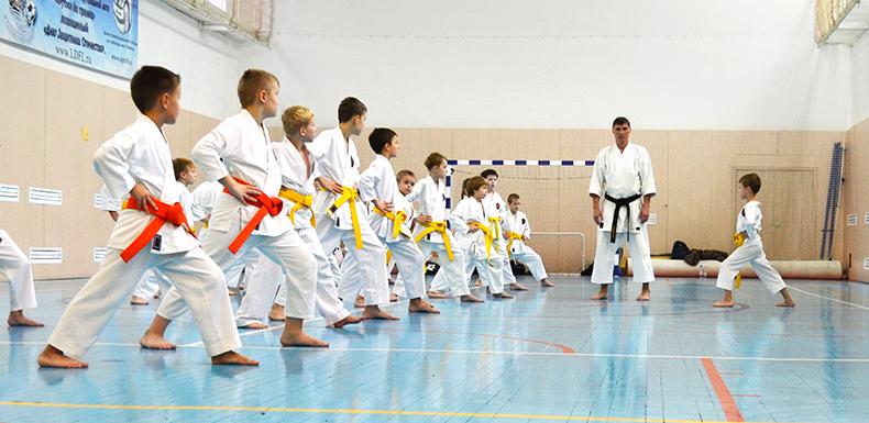 4 февраля 2018 года состоится семинар «Кихон-основы техники каратэ» под руководством главного тренера КБИ «Будо-Академия» Ю.А.Фёдорова.