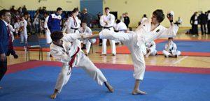 Итоги Чемпионата ЦФО, Первенства ЦФО и Всероссийских соревнований «Молодое поколение» по всестилевому каратэ.