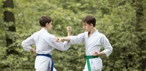 Турнир по каратэ КБИ «Будо-Академия» среди учеников с 8 КЮ и выше.